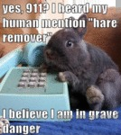 "Yes, 911? I Heard My Human Mention ""hare Remover"""