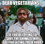 Dear Vegetarians... If You're Trying To...
