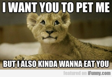I want you to pet me...