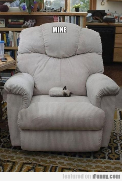 This Chair Is Mine.