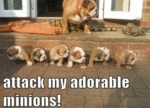 Attack, My Adorable Minions!
