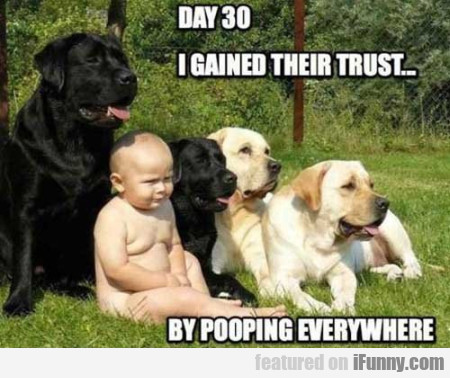 Day 30 - I gained their trust..