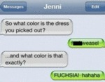 So What Color Is The Dress You Picked Out?