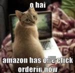 O Hai. Amazon Has One Click Orderin Now.