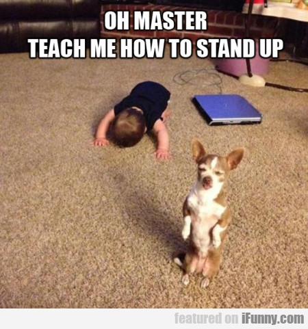 Oh Master, teach me how to stand up!