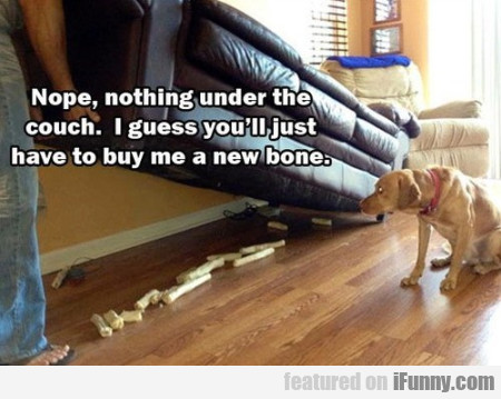 Nope, Nothing Under The Couch