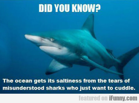 did you know? the ocean gets its saltiness...