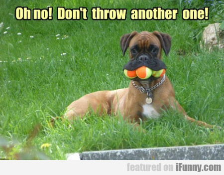 Oh no! Don't throw another one!