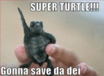 Super Turtle!! Gonna Save The Dei