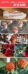 How To: Make A Bouquet Out Of Bacon