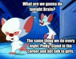 What Are We Going To Do Tonight Brain?