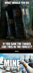 What Would You Do If You Saw The Tardis Like...