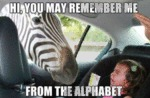 Hi, You Might Remember Me From The Alphabet