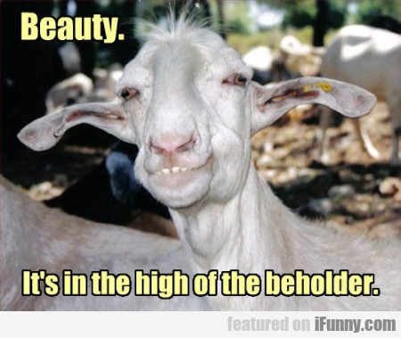 Beauty, Is In The High Of The Beholder