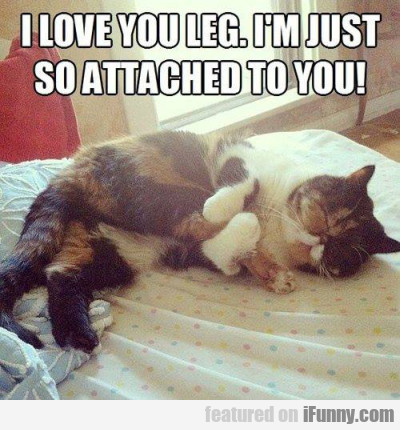 I Love You Leg. I'm Just So Attached To You!