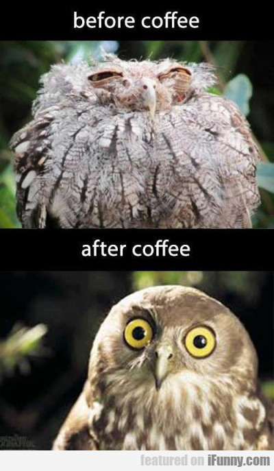 Before coffee and after coffee
