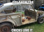Got A New Car, Chicks Love It
