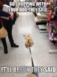Go Shopping With Your Dog They Said, It Will Be..