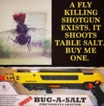 A Fly Killing Shotgun Exists...