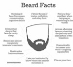 Beard Facts, Stroking A Beard...