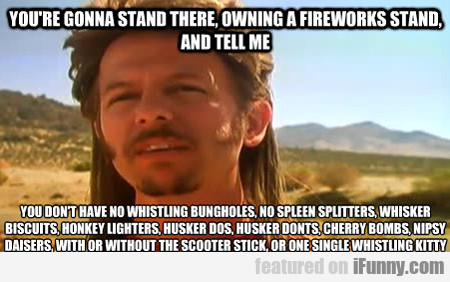 You're Gonna Stand There, Owning A Fireworks...
