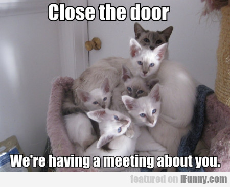 Close The Door. We're Having A Meeting About You