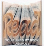Read: You Ruined My Book, Asshole