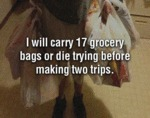 I Will Carry 17 Grocery Bags Or Die Trying...
