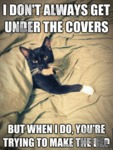 I Don't Always Get Under The Covers..