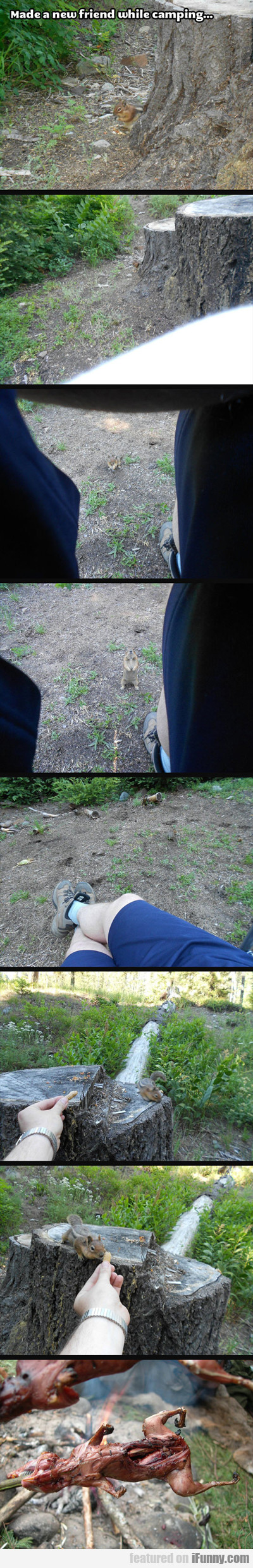 Made A New Friend While Camping...