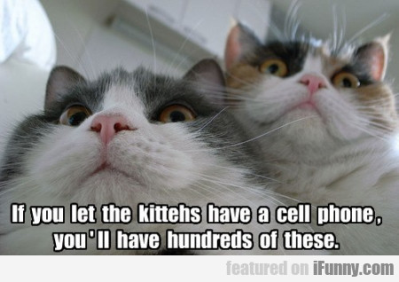 If You Let The Kittehs Have A Cell Phone You''ll..