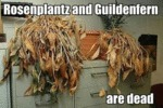 Rosenplantz And Guildenfern Are Dead