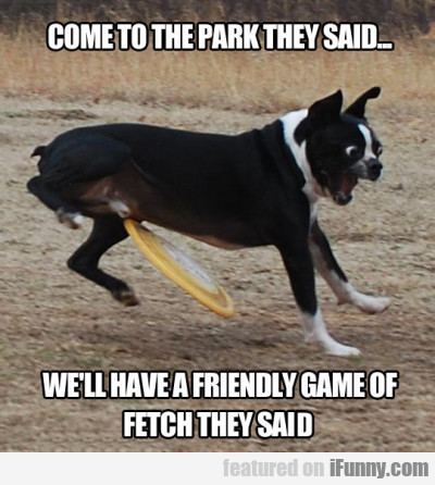 Come To The Park They Said...