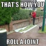 That's How You Roll A Joint