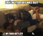 I Know Your Day Was Ruff...