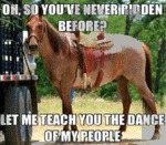 Oh, So You've Never Ridden Before?