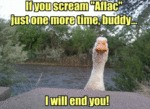 "If You Scream ""aflac"" Just One More Time Buddy..."