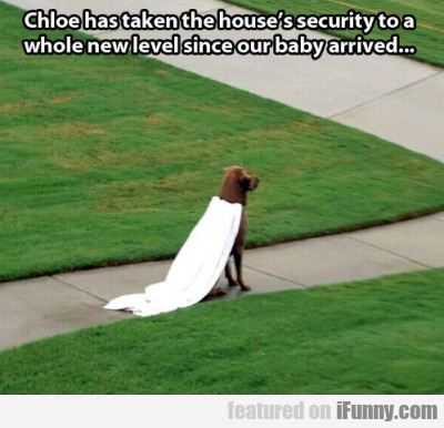 Chloe Has Taken The House's Security To A Whole..