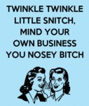 Twinkle Twinkle Little Snitch, Mind Your Own...