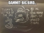 Dammit, Big Bird...