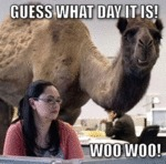 Guess What Day It Is, Woo Woo!