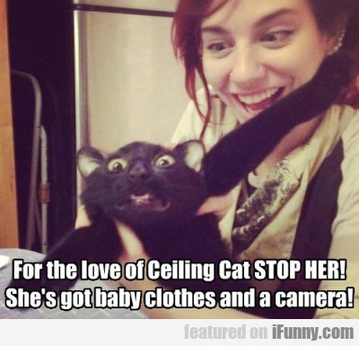 For The Love Of Ceiling Cat Stop Her!