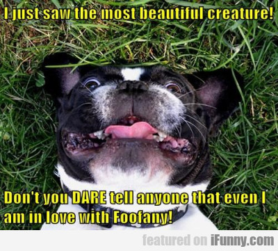 I Just Saw The Most Beautiful Creature!