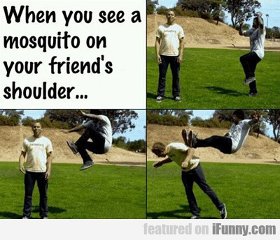 When You See A Mosquito On Your Friend's...