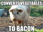 Converts Vegetables To Bacon
