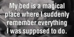 My Bed Is A Magical Place Where I Suddenly...