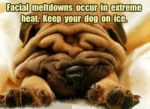Facial Meltdowns Occur In Extreme Heat. Keep...