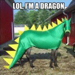 Lol, I'm A Dragon