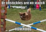 Ur Obstickels Are No Match For Hoverdog