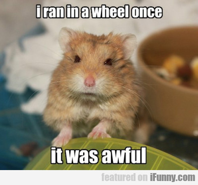I Ran In A Wheel Once, It Was Awful